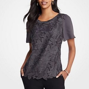 Ann Taylor NWT Butterfly Lace Blouse